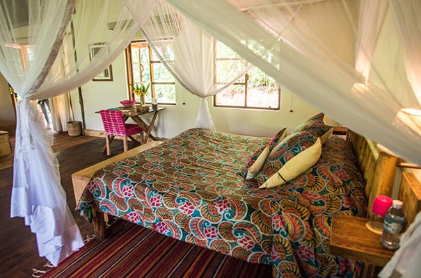 Volcanoes Safari Lodge Bwindi